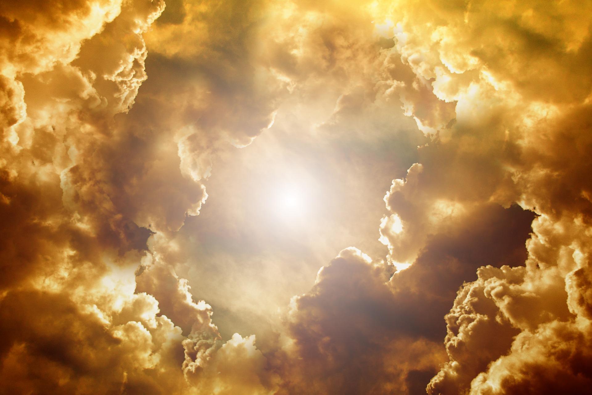 『天地創造』(映画)のあらすじ・基本情報・感想まとめ